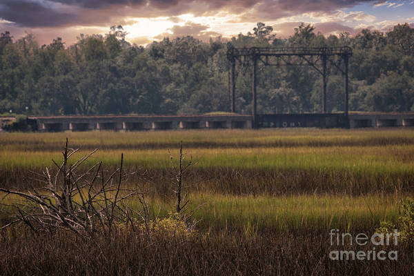 Photograph - Train Trestle Over Rantowles Creek by Dale Powell