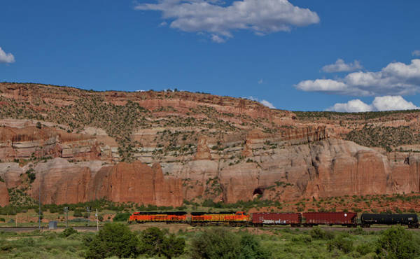Photograph - Trains by Ree Reid