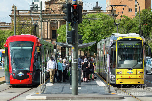 Straight Ahead Wall Art - Photograph - Trams At Victoria Square by Andrew Michael