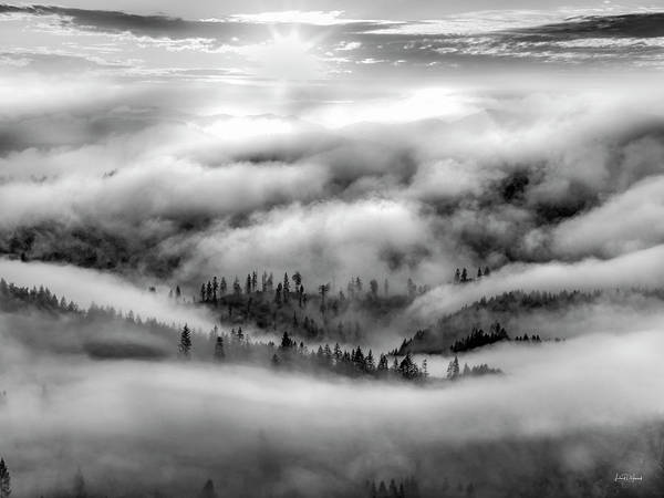 Oregon Ridge Photograph - Tranquil Black And White 10 by Leland D Howard