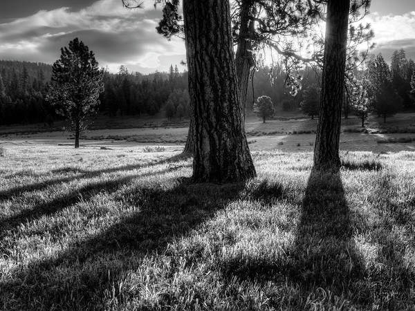 Photograph - Tranquil Black And White 12 by Leland D Howard