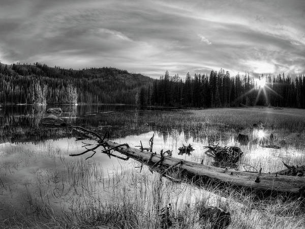Photograph - Tranquil Black And White 5 by Leland D Howard