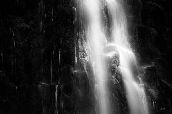 Photograph - Tranquil Black And White 8 by Leland D Howard