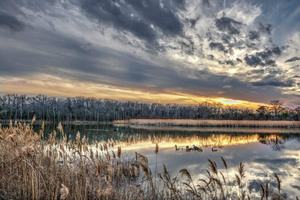 Photograph - Tranquil Chesapeake Bay Pond During Winter At Sunset by Patrick Wolf