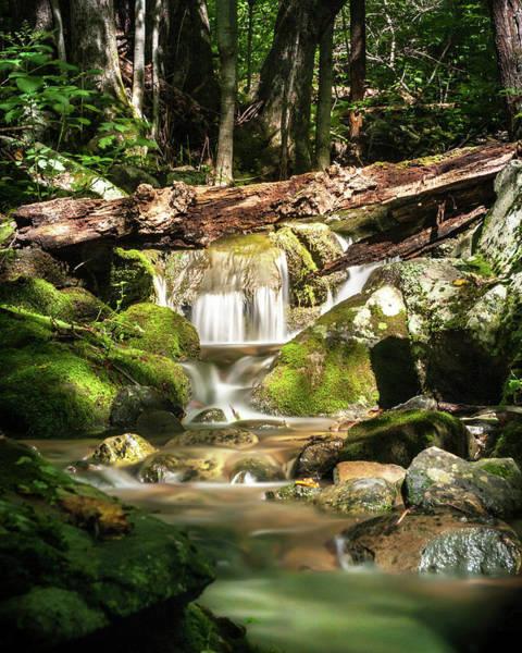 Photograph - Tranquil Flow by Lara Ellis