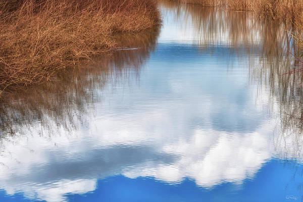 Photograph - Tranquil Illusion by Dee Browning