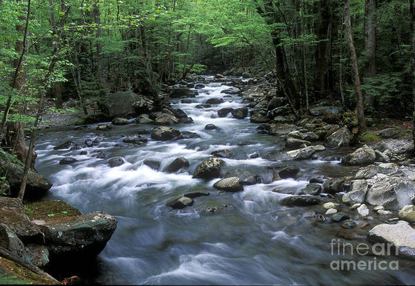 Wall Art - Photograph - Tranquil Moments On Little Pigeon Creek by Sandra Bronstein