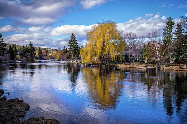 Photograph - Tranquil Reflection On The Deschutes by Lynn Bauer