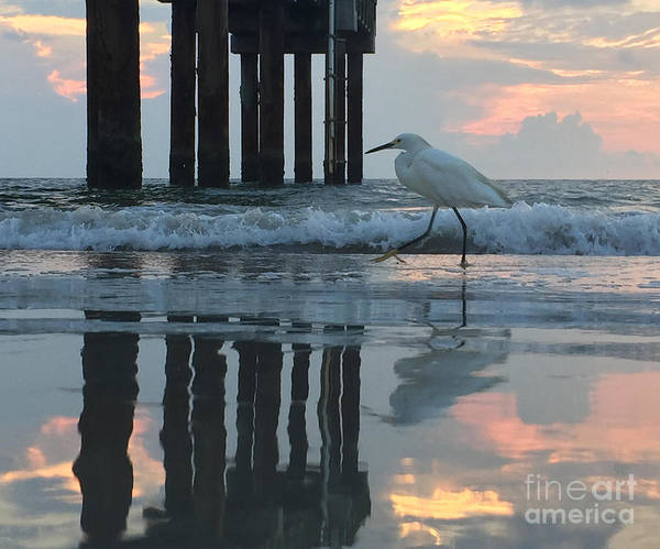 Photograph - Tranquil Reflections by LeeAnn Kendall