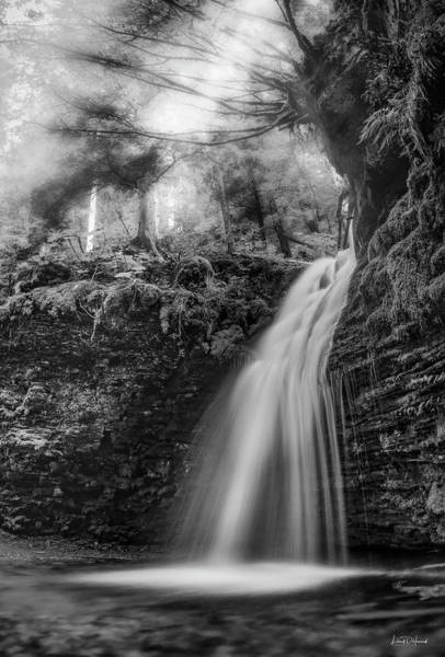 Photograph - Tranquil Shadow Falls by Leland D Howard
