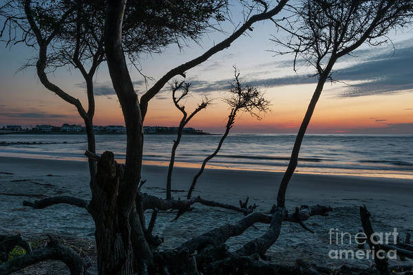Photograph - Tranquil Sunrise Over The Atlantic Ocean by Dale Powell