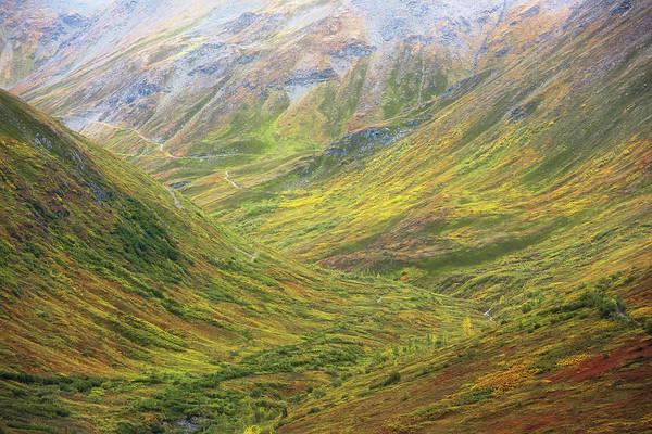 Tundra Wall Art - Photograph - Transcendental Tundra by Gary Randall