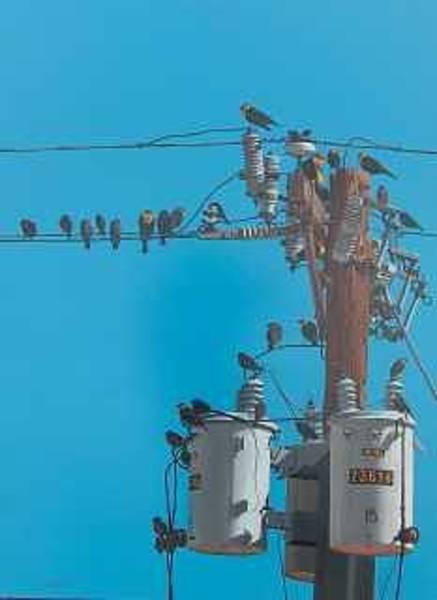 Transformer Painting - Transformed Congrigation by Doug Quarles