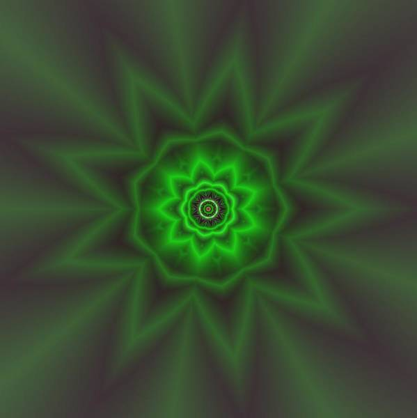 Digital Art - Transition Flower 3 by Robert Thalmeier
