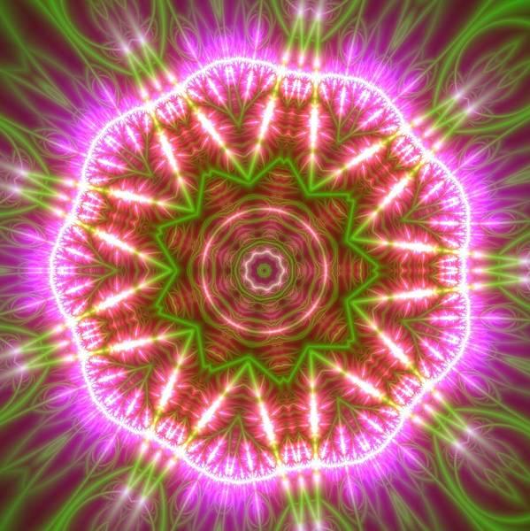 Digital Art - Transition Flower 4 by Robert Thalmeier