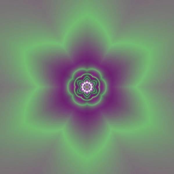 Digital Art - Transition Flower 6 Beats 2 by Robert Thalmeier