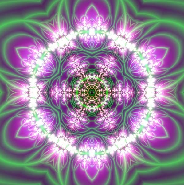 Digital Art - Transition Flower 6 Beats 3 by Robert Thalmeier