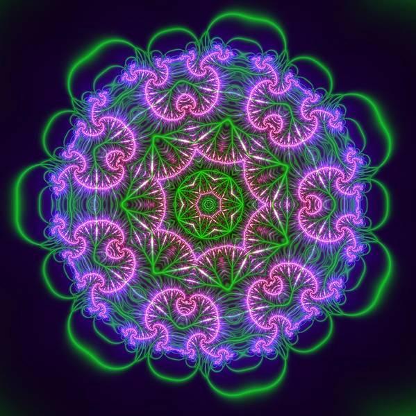 Digital Art - Transition Flower 7 Beats by Robert Thalmeier