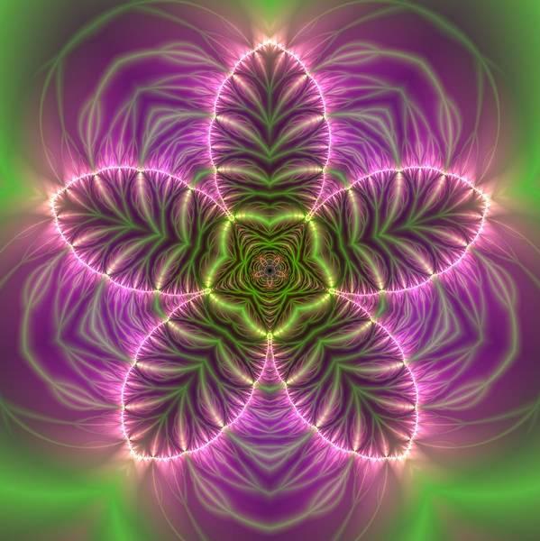 Digital Art - Transition Flower by Robert Thalmeier