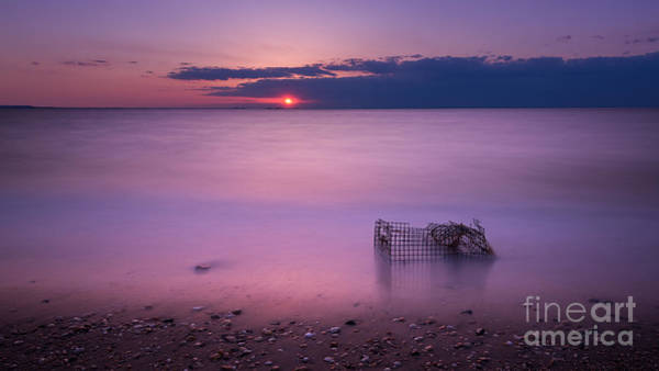 Sandy Hook Wall Art - Photograph - Trapped by Michael Ver Sprill
