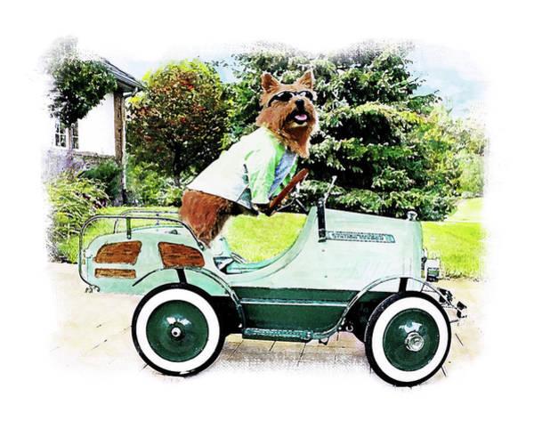 Wagon Digital Art - Traveling Terrier by Susan Stone