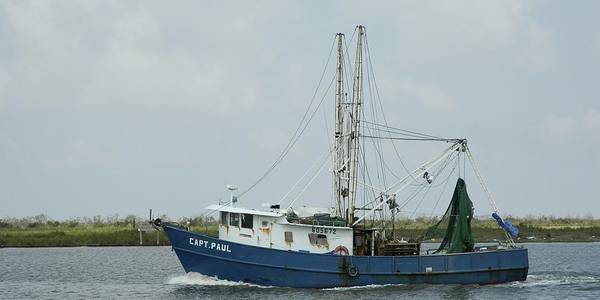 Photograph - Trawler Capt Paul by Bradford Martin