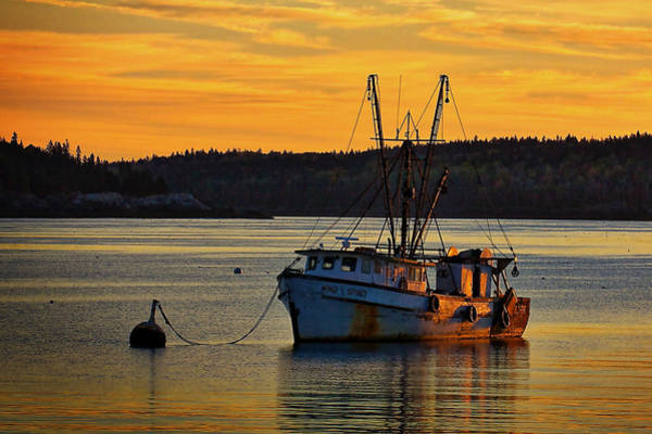 Photograph - Trawler Sunrise by Stuart Litoff