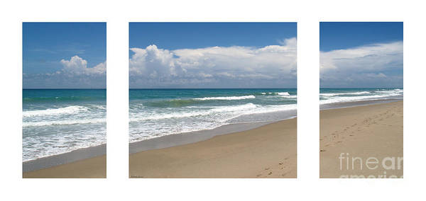 Photograph - Treasure Coast Beach Florida Seascape C4 Triptych 1 by Ricardos Creations