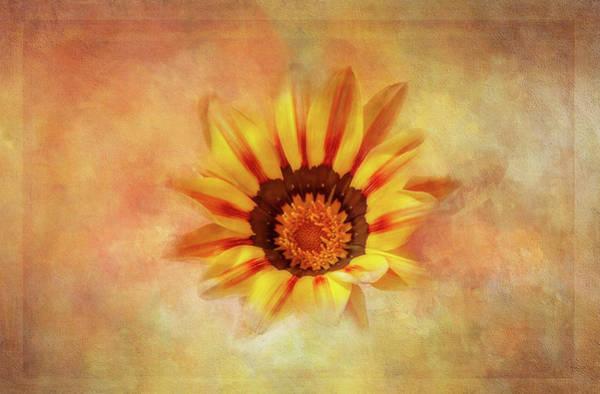 Wall Art - Digital Art - Treasure Flower 2 by Terry Davis