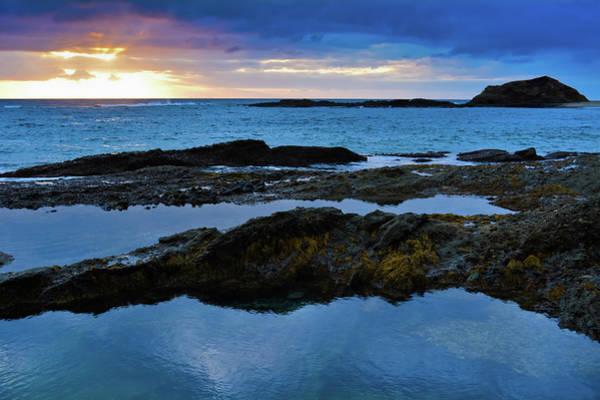 Photograph - Treasure Island Beach by Kyle Hanson