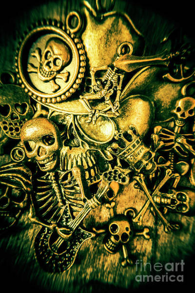 Bone Photograph - Treasures From Skull Island by Jorgo Photography - Wall Art Gallery