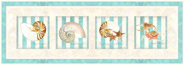Wall Art - Painting - Treasures From The Sea - Nautilus Shell by Audrey Jeanne Roberts