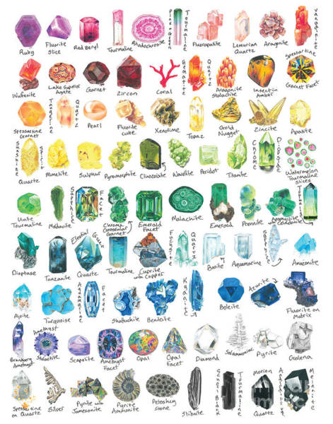 Hand Drawn Drawing - Treasures Of The Earth by Abigail Kramer