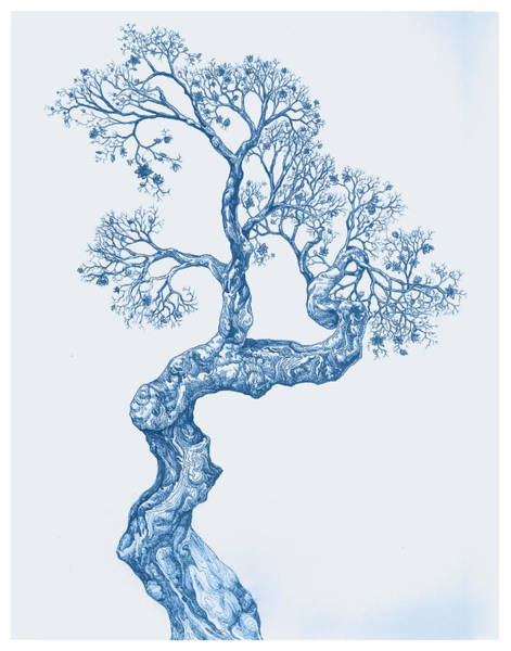 Tree 14 Blue 1 Art Print