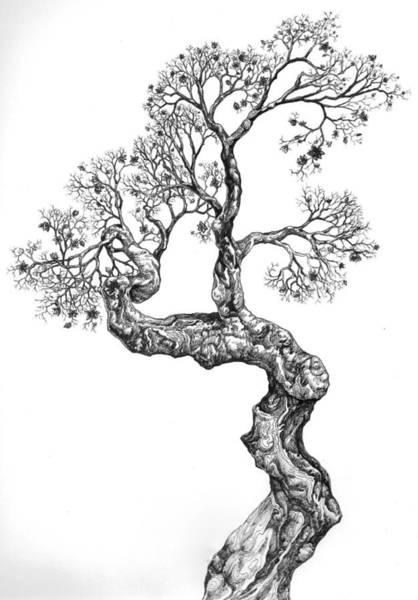 Tree 14 Art Print