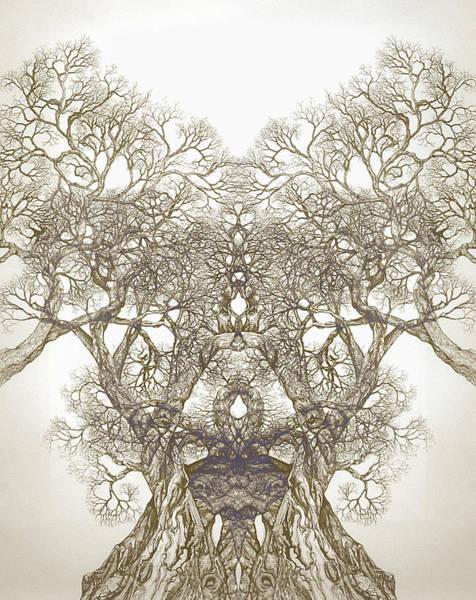 Tree 20 Hybrid 1 Art Print
