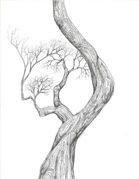 Digital Art - Tree 40 by Brian Kirchner