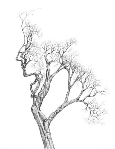 Photograph - Tree 43 by Brian Kirchner