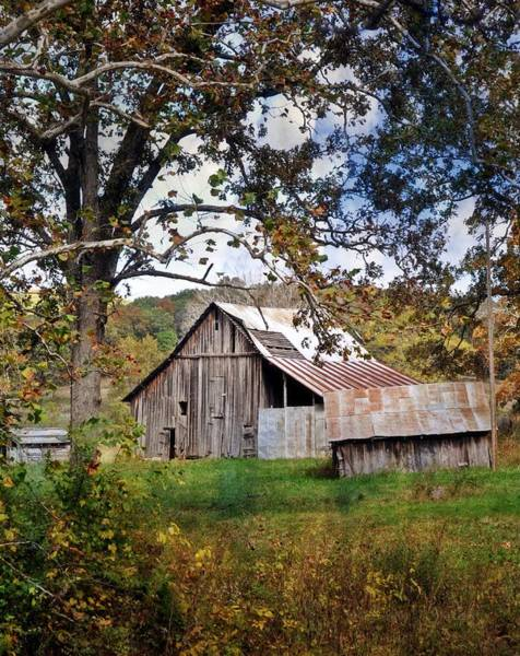 Photograph - Tree And Barn by Marty Koch
