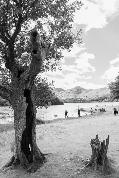 Wall Art - Photograph - Tree And People By The Lake by Iordanis Pallikaras