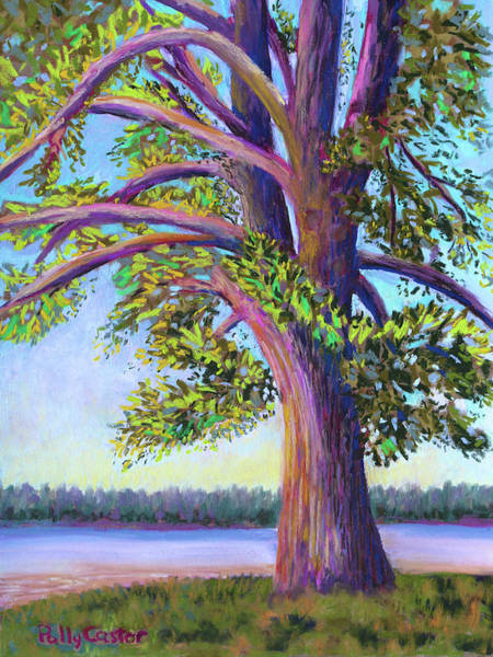 Painting - Tree At Camp Newfound by Polly Castor