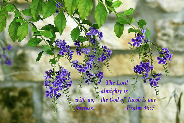 Scripture Photograph - Tree Branches With Purple Flowers Ps.46 V 7 by Linda Phelps