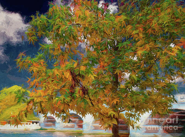 Digital Art - Tree By The Bridge by Leigh Kemp