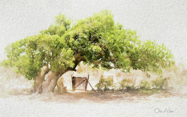 Tree By The Gate Art Print