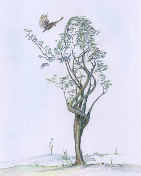 Wall Art - Drawing - Tree Dancer In Flight Re-imagined by Mark Johnson