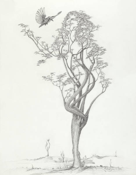 Lady Bug Drawing - Tree Dancer In Flight by Mark Johnson