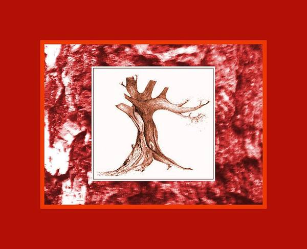 Mixed Media - Tree Drawing On Bark Photo Red by Julia Woodman