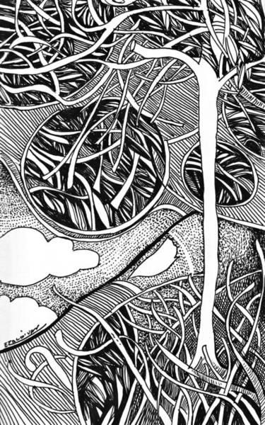 Tree In Metamorphosis Art Print