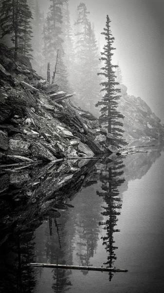 Moraine Lake Photograph - Tree In The Fog Bw by Joan Carroll
