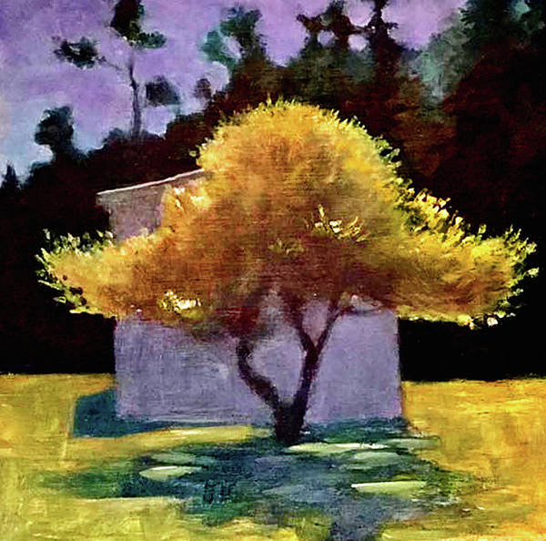 Port Townsend Painting - Tree by James Murphy